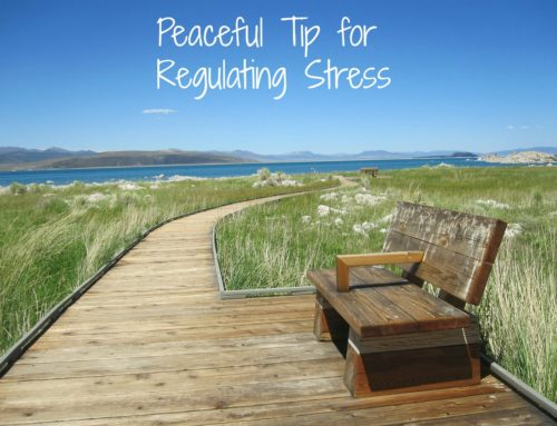 Peaceful tip for regulating stress